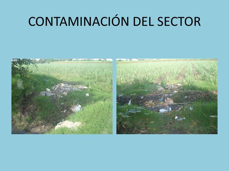 CONTAMINACIÓN DEL SECTOR