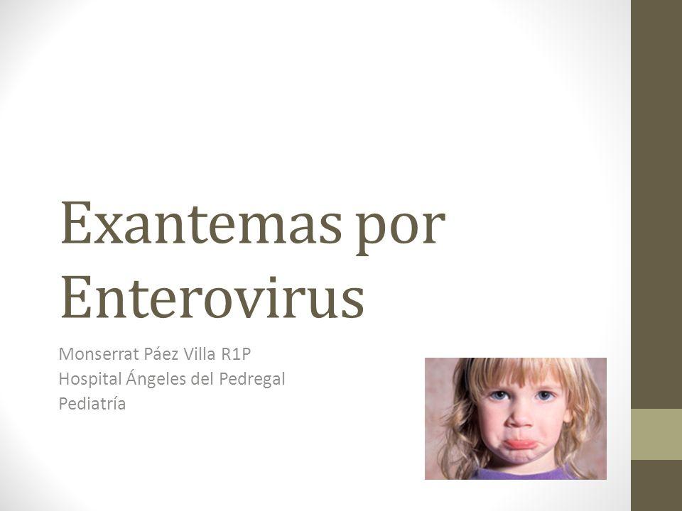Exantemas por Enterovirus Monserrat Páez Villa R1P Hospital Ángeles del Pedregal Pediatría