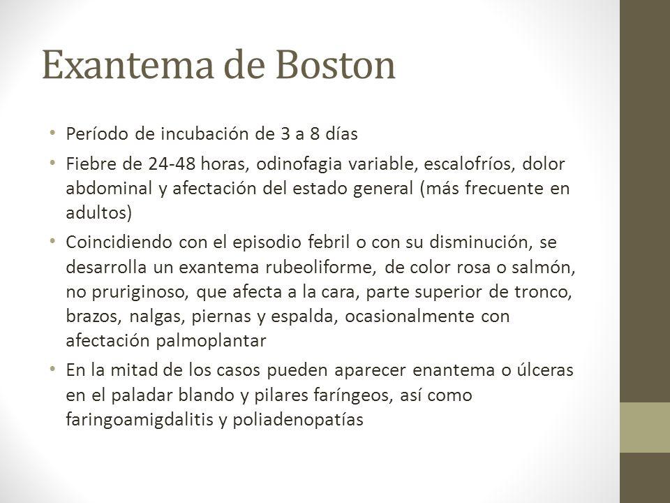 Exantema de Boston Período de incubación de 3 a 8 días Fiebre de 24-48 horas, odinofagia variable, escalofríos, dolor abdominal y afectación del estad