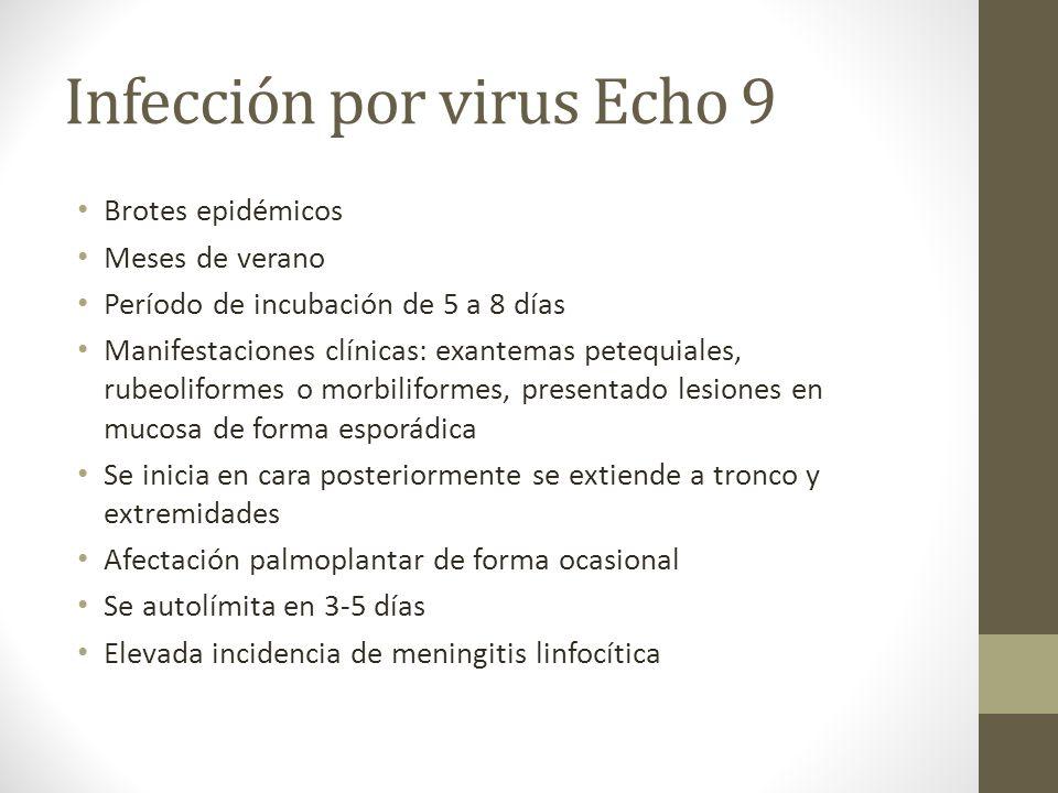 Infección por virus Echo 9 Brotes epidémicos Meses de verano Período de incubación de 5 a 8 días Manifestaciones clínicas: exantemas petequiales, rube