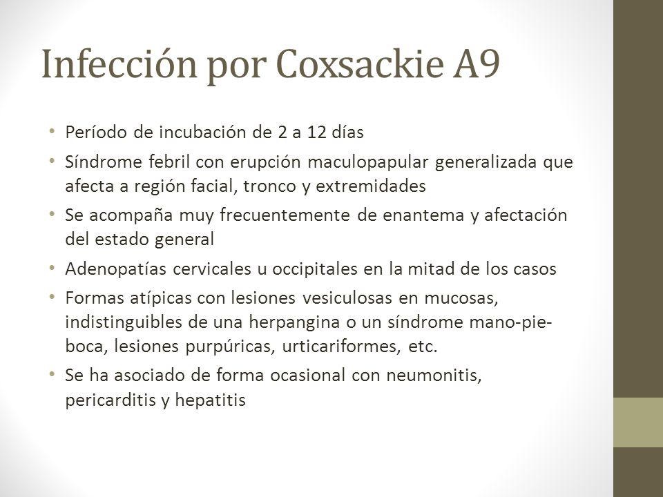 Infección por Coxsackie A9 Período de incubación de 2 a 12 días Síndrome febril con erupción maculopapular generalizada que afecta a región facial, tr