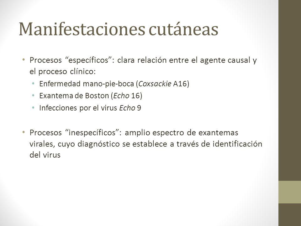 Manifestaciones cutáneas Procesos específicos: clara relación entre el agente causal y el proceso clínico: Enfermedad mano-pie-boca (Coxsackie A16) Ex