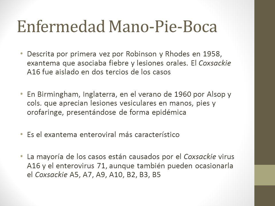Enfermedad Mano-Pie-Boca Descrita por primera vez por Robinson y Rhodes en 1958, exantema que asociaba fiebre y lesiones orales. El Coxsackie A16 fue