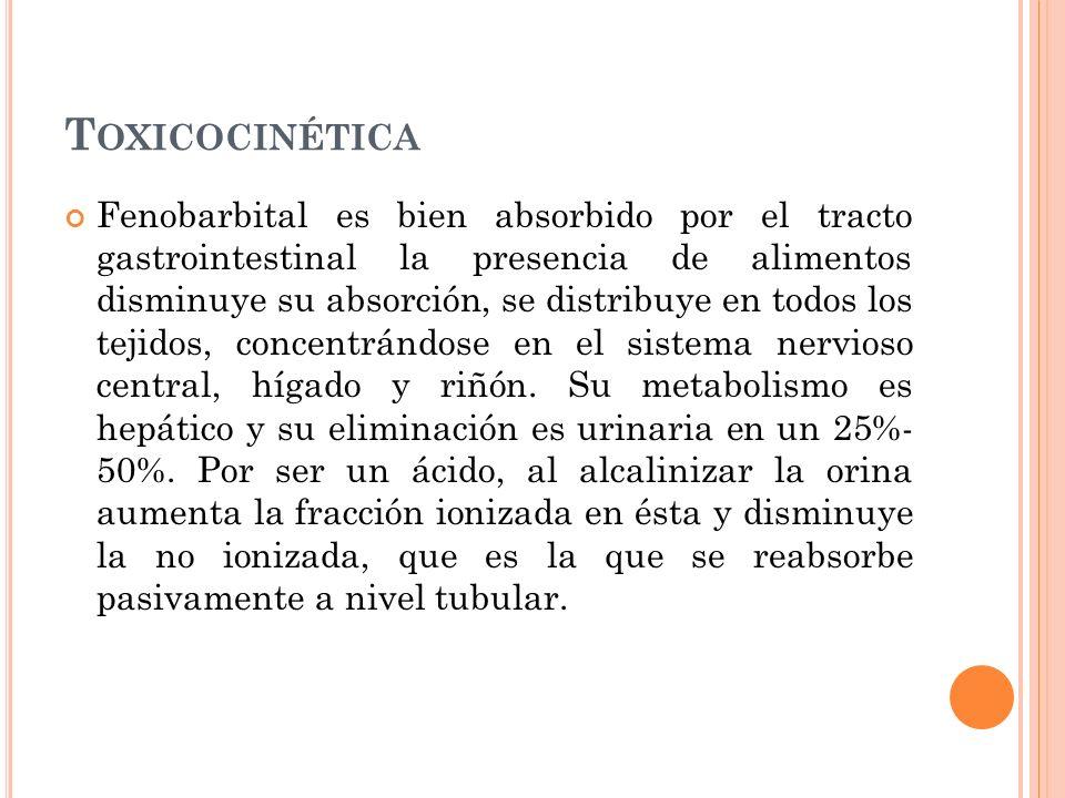 T OXICOCINÉTICA Fenobarbital es bien absorbido por el tracto gastrointestinal la presencia de alimentos disminuye su absorción, se distribuye en todos