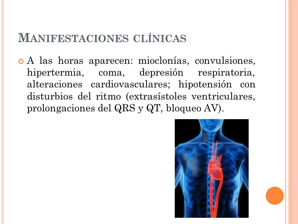 M ANIFESTACIONES CLÍNICAS A las horas aparecen: mioclonías, convulsiones, hipertermia, coma, depresión respiratoria, alteraciones cardiovasculares; hi