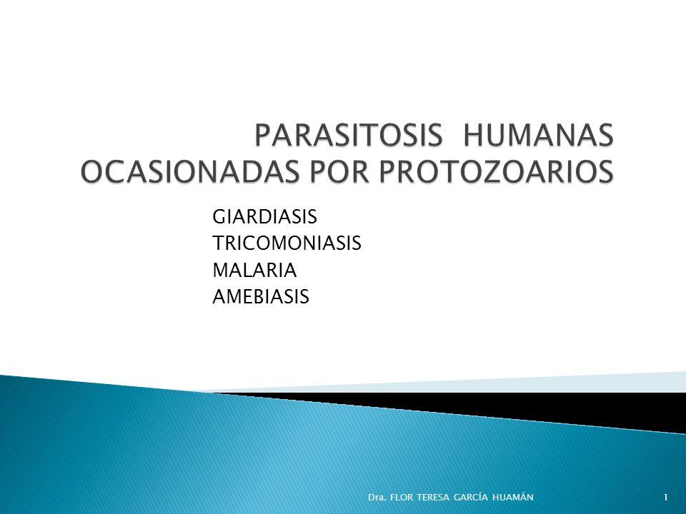 GIARDIASIS TRICOMONIASIS MALARIA AMEBIASIS Dra. FLOR TERESA GARCÍA HUAMÁN1