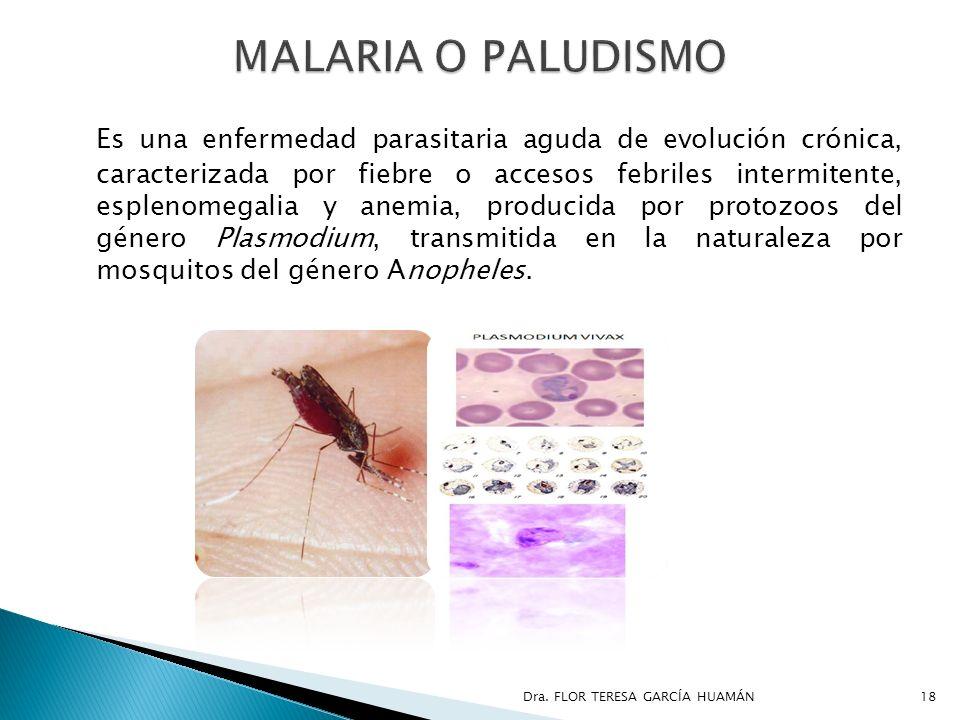 Es una enfermedad parasitaria aguda de evolución crónica, caracterizada por fiebre o accesos febriles intermitente, esplenomegalia y anemia, producida