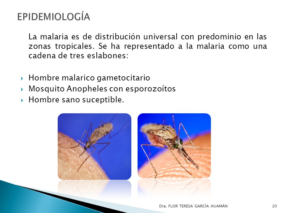 La malaria es de distribución universal con predominio en las zonas tropicales. Se ha representado a la malaria como una cadena de tres eslabones: Hom