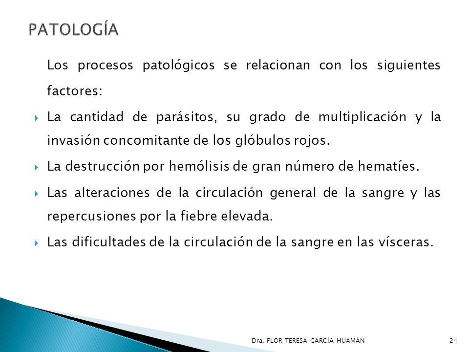Los procesos patológicos se relacionan con los siguientes factores: La cantidad de parásitos, su grado de multiplicación y la invasión concomitante de