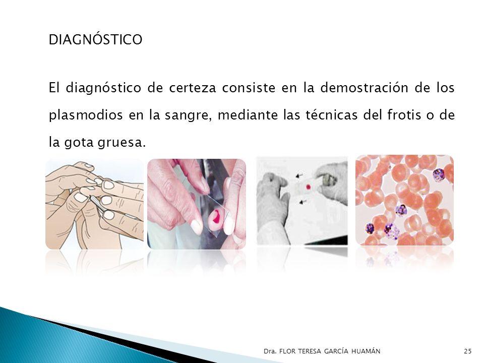 DIAGNÓSTICO El diagnóstico de certeza consiste en la demostración de los plasmodios en la sangre, mediante las técnicas del frotis o de la gota gruesa