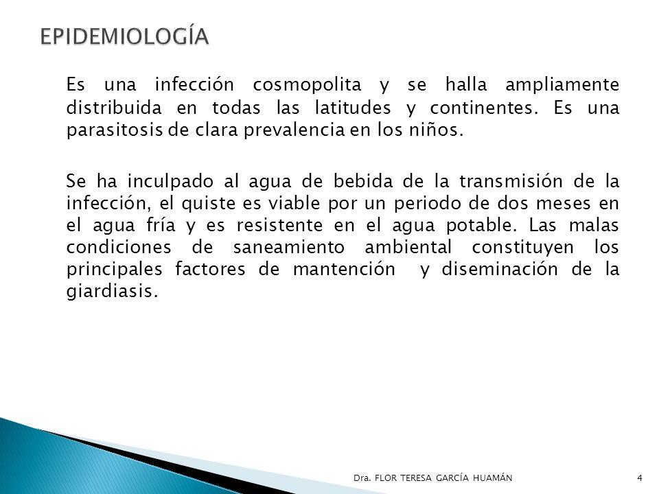 Es una infección cosmopolita y se halla ampliamente distribuida en todas las latitudes y continentes. Es una parasitosis de clara prevalencia en los n