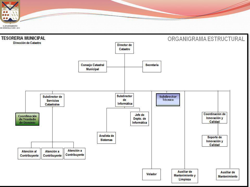 Coordinación de Traslado de Dominio Subdirector Técnico