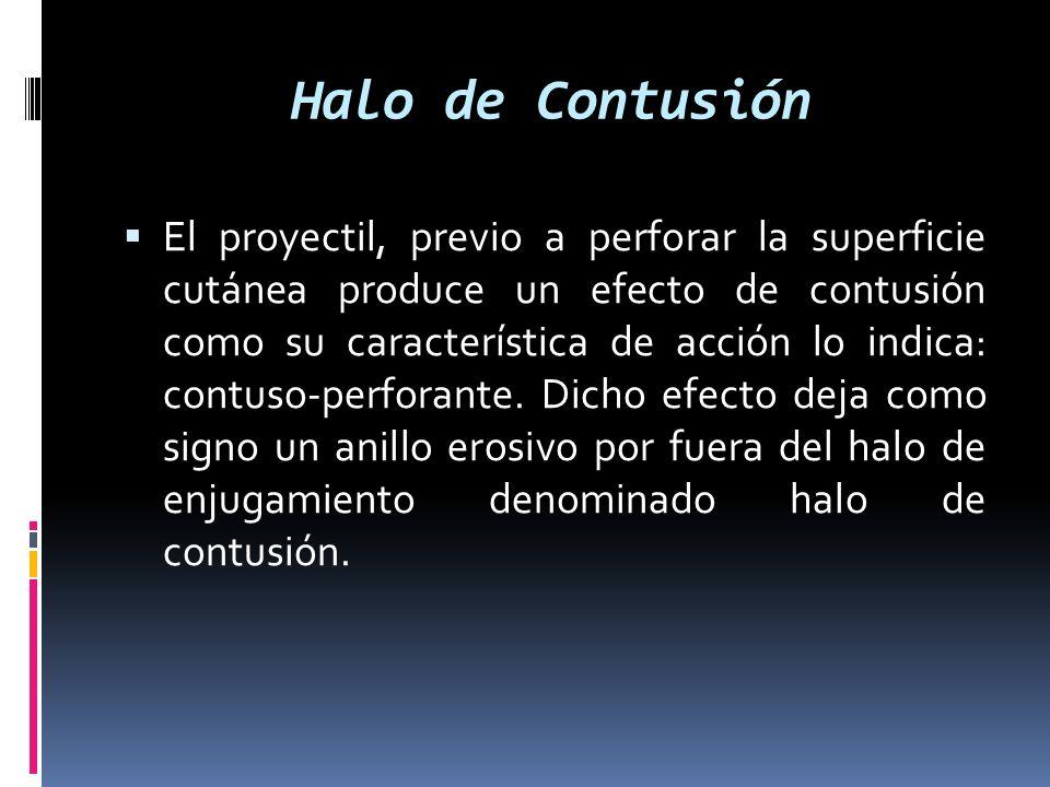 Halo de Contusión El proyectil, previo a perforar la superficie cutánea produce un efecto de contusión como su característica de acción lo indica: con