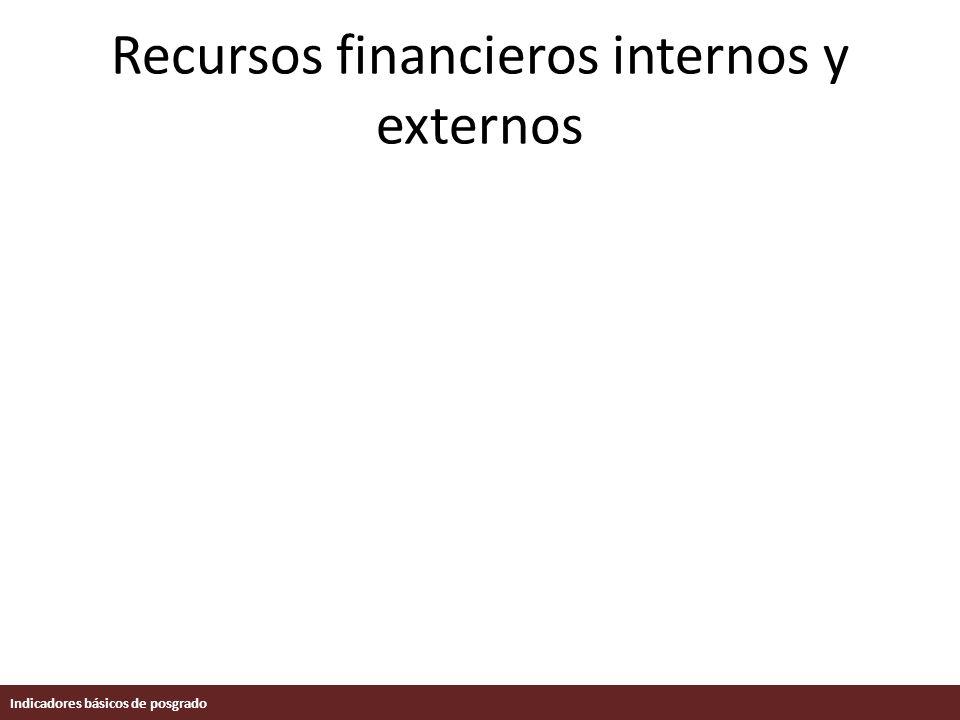 Recursos financieros internos y externos Indicadores básicos de posgrado