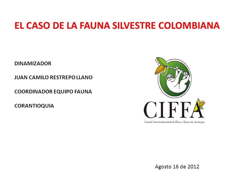 EL CASO DE LA FAUNA SILVESTRE COLOMBIANA DINAMIZADOR JUAN CAMILO RESTREPO LLANO COORDINADOR EQUIPO FAUNA CORANTIOQUIA Agosto 16 de 2012