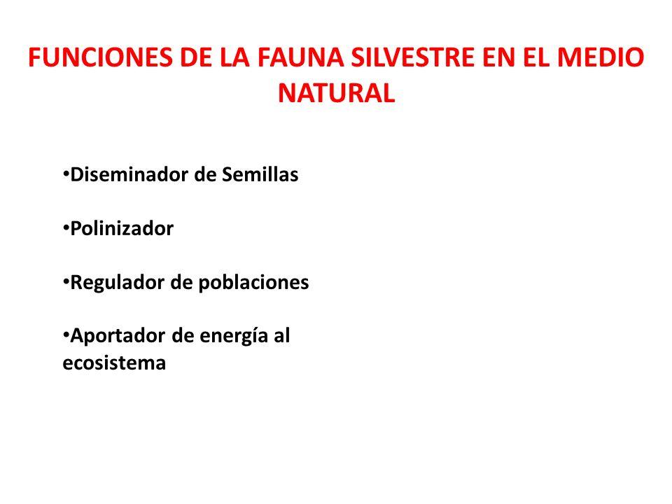 FUNCIONES DE LA FAUNA SILVESTRE EN EL MEDIO NATURAL Diseminador de Semillas Polinizador Regulador de poblaciones Aportador de energía al ecosistema