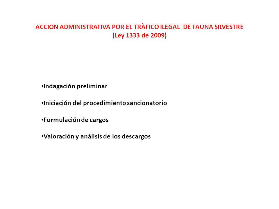 ACCION ADMINISTRATIVA POR EL TRÀFICO ILEGAL DE FAUNA SILVESTRE (Ley 1333 de 2009) Indagación preliminar Iniciación del procedimiento sancionatorio Formulación de cargos Valoración y análisis de los descargos