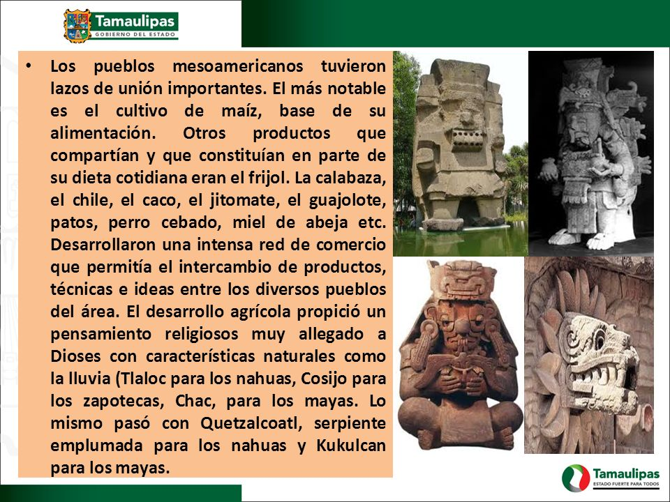 Los pueblos mesoamericanos tuvieron lazos de unión importantes. El más notable es el cultivo de maíz, base de su alimentación. Otros productos que com