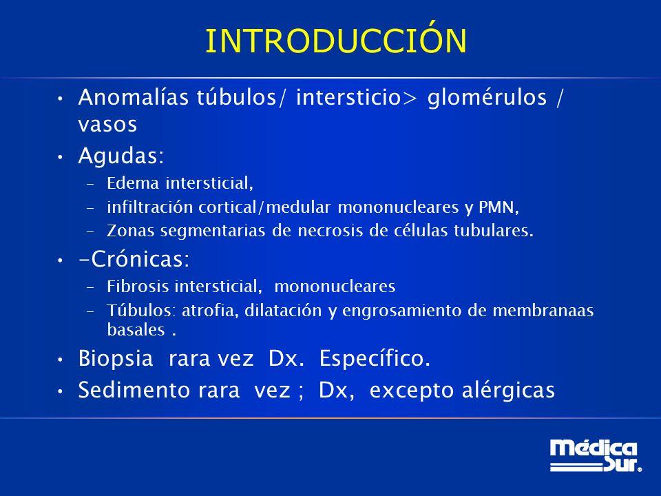 INTRODUCCIÓN Anomalías túbulos/ intersticio> glomérulos / vasos Agudas: –Edema intersticial, –infiltración cortical/medular mononucleares y PMN, –Zonas segmentarias de necrosis de células tubulares.