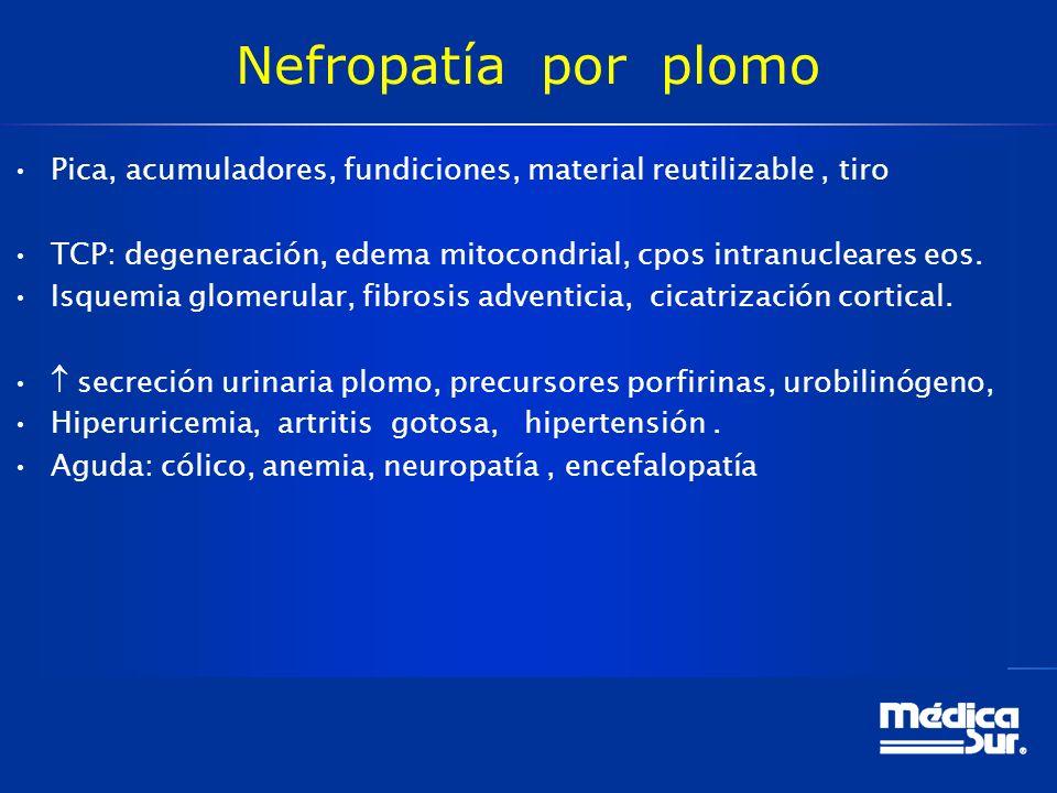 Nefropatía por plomo Pica, acumuladores, fundiciones, material reutilizable, tiro TCP: degeneración, edema mitocondrial, cpos intranucleares eos.