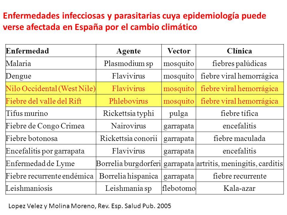 Enfermedades infecciosas y parasitarias cuya epidemiología puede verse afectada en España por el cambio climático Lopez Velez y Molina Moreno, Rev. Es