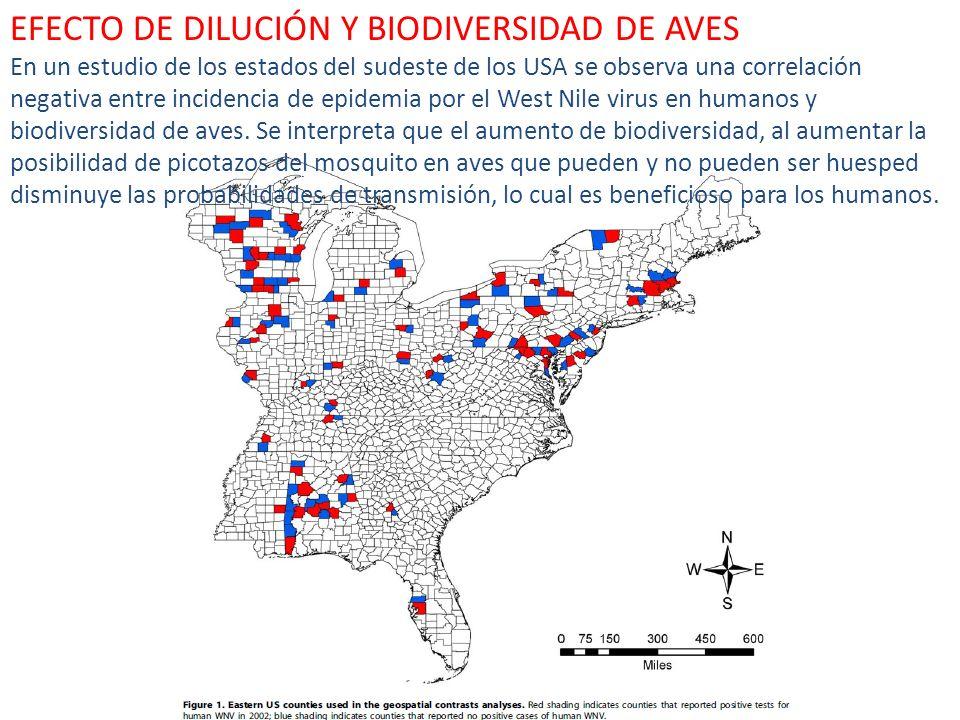 EFECTO DE DILUCIÓN Y BIODIVERSIDAD DE AVES En un estudio de los estados del sudeste de los USA se observa una correlación negativa entre incidencia de