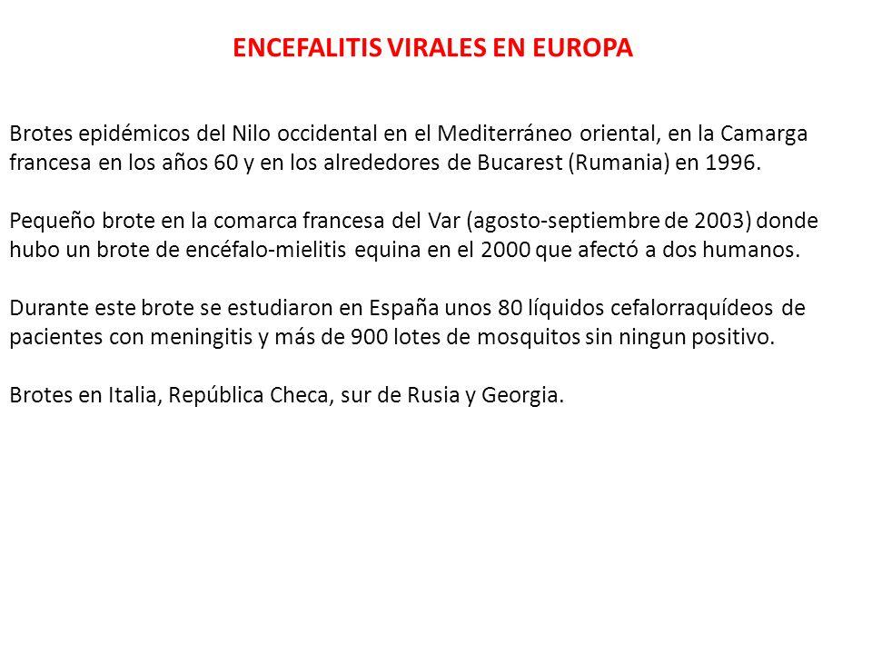 ENCEFALITIS VIRALES EN EUROPA Brotes epidémicos del Nilo occidental en el Mediterráneo oriental, en la Camarga francesa en los años 60 y en los alrede