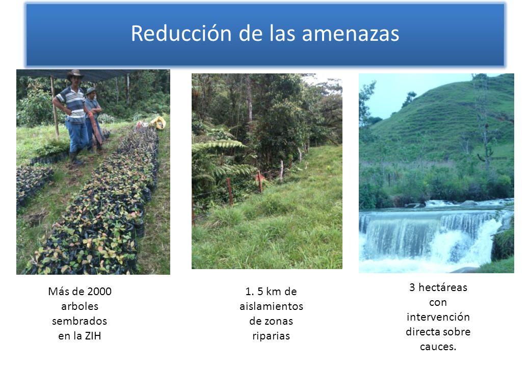 Más de 2000 arboles sembrados en la ZIH 1. 5 km de aislamientos de zonas riparias 3 hectáreas con intervención directa sobre cauces. Reducción de las