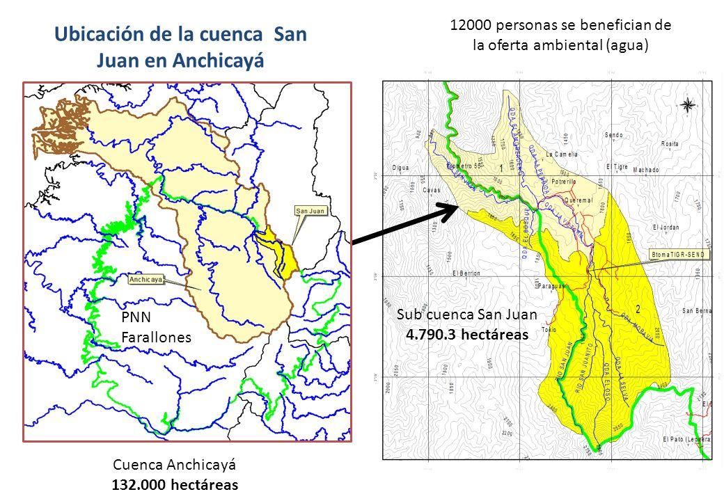 Ubicación de la cuenca San Juan en Anchicayá Cuenca Anchicayá 132.000 hectáreas Sub cuenca San Juan 4.790.3 hectáreas 12000 personas se benefician de