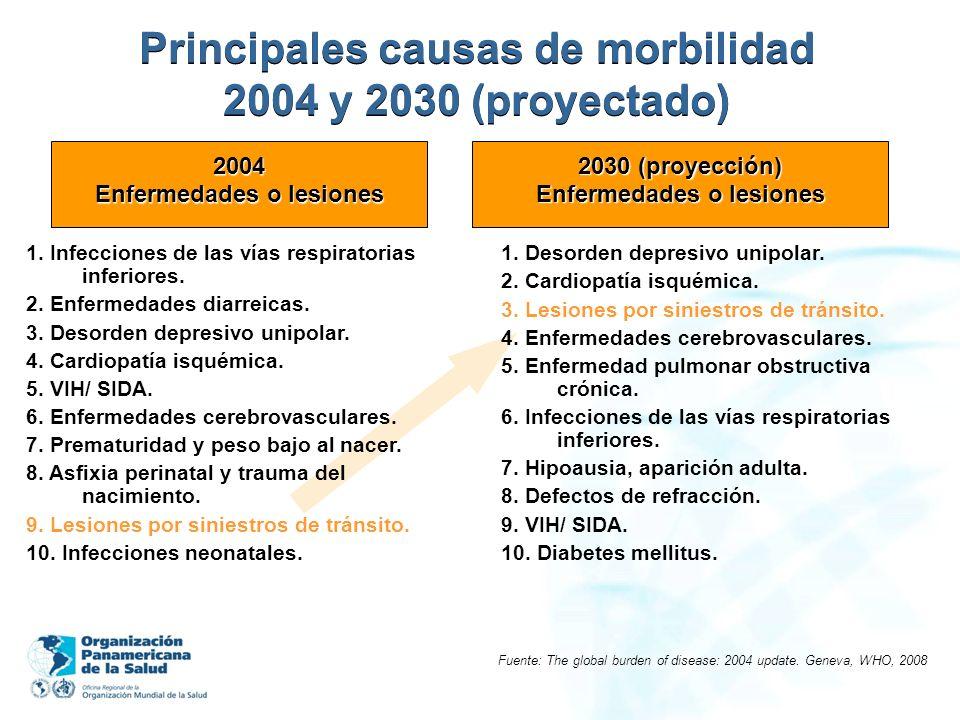 Principales causas de morbilidad 2004 y 2030 (proyectado) Fuente: The global burden of disease: 2004 update. Geneva, WHO, 2008 1. Infecciones de las v