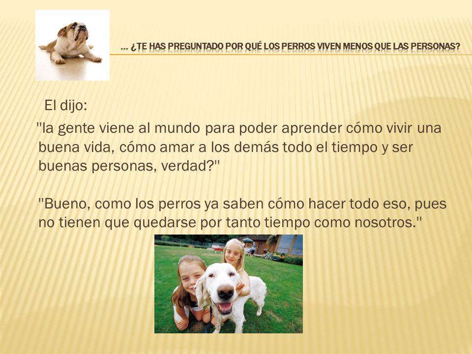 La moraleja es: Si un perro fuera tu maestro, aprenderías cosas como: Cuando tus seres queridos llegan a casa, siempre corre a saludarlos.