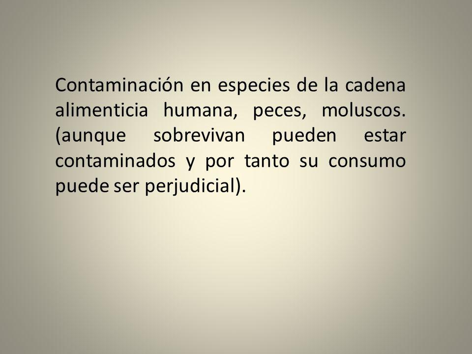 Contaminación en especies de la cadena alimenticia humana, peces, moluscos. (aunque sobrevivan pueden estar contaminados y por tanto su consumo puede