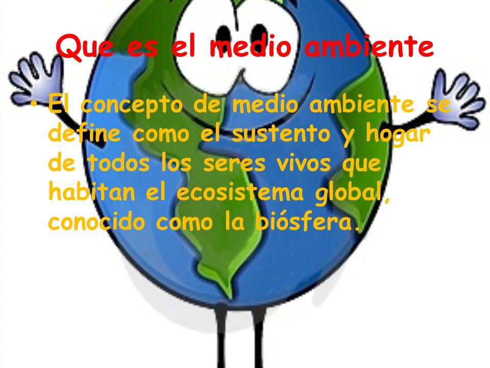 Que es el medio ambiente El concepto de medio ambiente se define como el sustento y hogar de todos los seres vivos que habitan el ecosistema global, conocido como la biósfera.