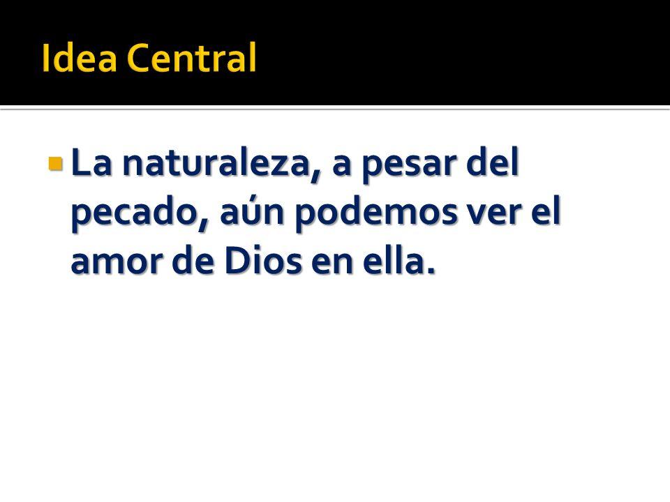 1.- Sal con tu GP/ familia al campo.Observa el amor de Dios en la naturaleza.