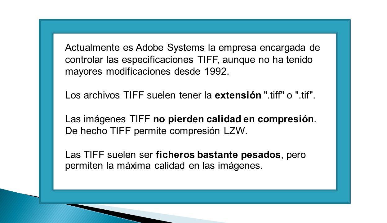 Actualmente es Adobe Systems la empresa encargada de controlar las especificaciones TIFF, aunque no ha tenido mayores modificaciones desde 1992.