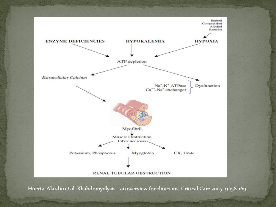 Desarrollo agudo y rápido de rabdomiolisis tras liberación.