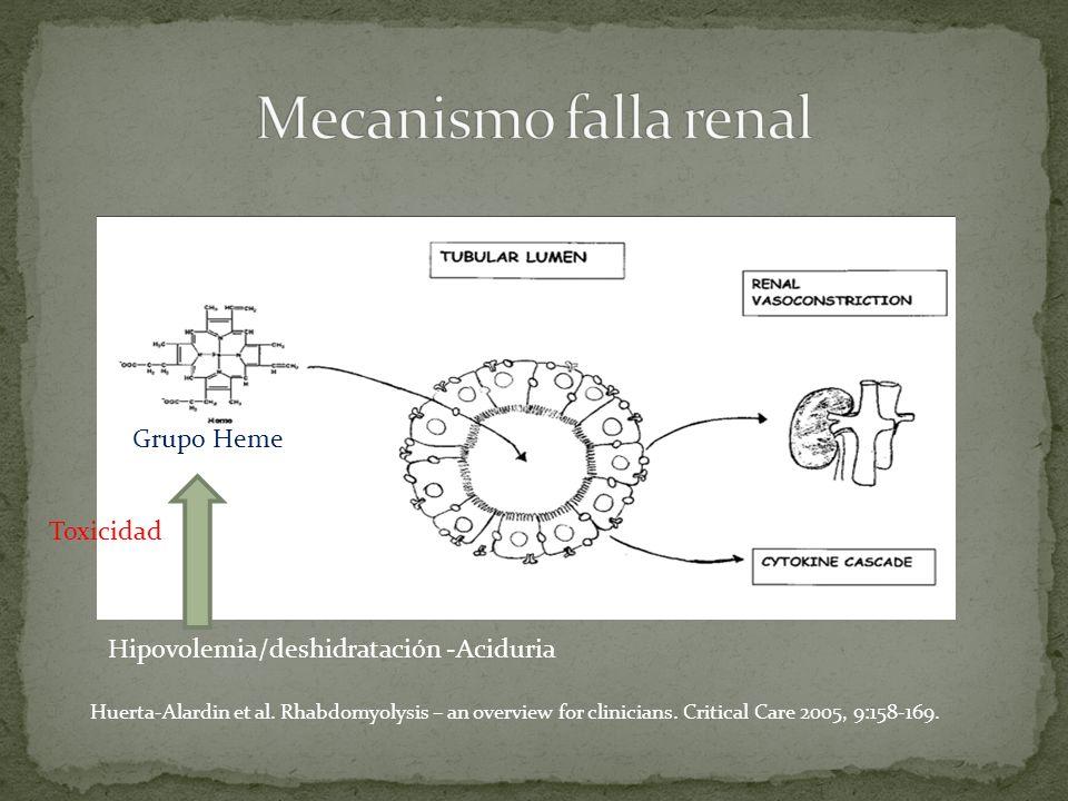 Grupo Heme Huerta-Alardin et al. Rhabdomyolysis – an overview for clinicians. Critical Care 2005, 9:158-169. Hipovolemia/deshidratación -Aciduria Toxi