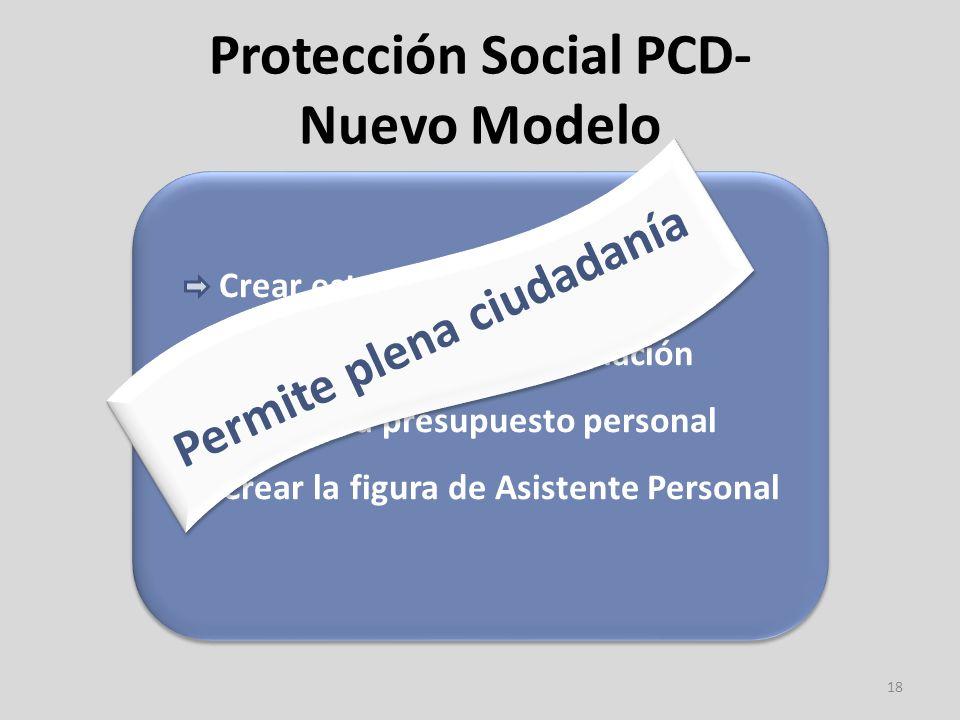 Protección Social PCD- Nuevo Modelo 18 Crear estructuras a nivel local Crear un fondo de financiación Acceder a presupuesto personal Crear la figura de Asistente Personal Crear estructuras a nivel local Crear un fondo de financiación Acceder a presupuesto personal Crear la figura de Asistente Personal Permite plena ciudadanía