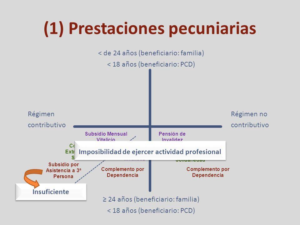(1) Prestaciones pecuniarias Régimen contributivo Régimen no contributivo < de 24 años (beneficiario: familia) < 18 años (beneficiario: PCD) 24 años (beneficiario: familia) < 18 años (beneficiario: PCD) Subsidio Mensual Vitalicio Complemento Extraordinario de Solidariedad Subsidio por Asistencia a 3ª Persona Pensión de Invalidez Complemento por Dependencia Complemento Extraordinario de Solidariedad Pensión de Invalidez Complemento por Dependencia Insuficiente Imposibilidad de ejercer actividad profesional