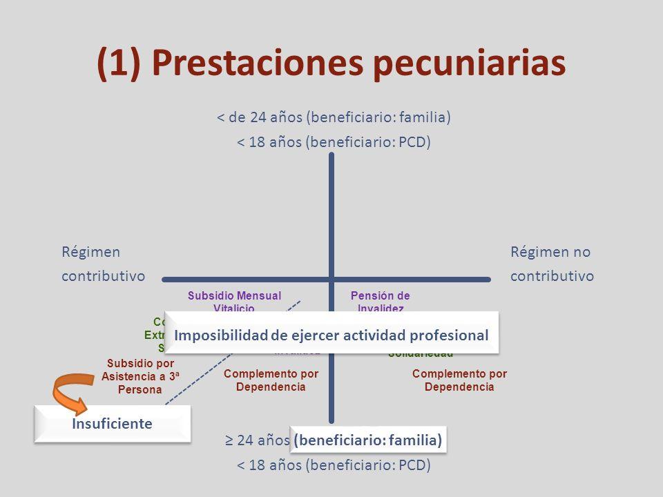 (1) Prestaciones pecuniarias Régimen contributivo Régimen no contributivo < de 24 años (beneficiario: familia) < 18 años (beneficiario: PCD) 24 años (beneficiario: familia) < 18 años (beneficiario: PCD) Subsidio Mensual Vitalicio Complemento Extraordinario de Solidariedad Subsidio por Asistencia a 3ª Persona Pensión de Invalidez Complemento por Dependencia Complemento Extraordinario de Solidariedad Pensión de Invalidez Complemento por Dependencia Imposibilidad de ejercer actividad profesional Insuficiente