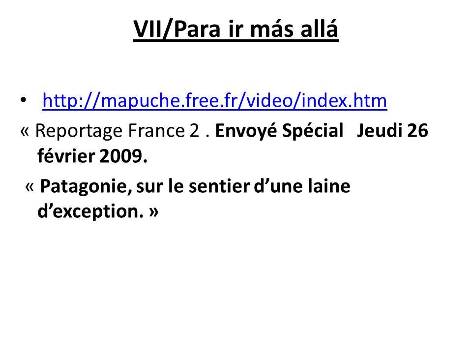 VII/Para ir más allá http://mapuche.free.fr/video/index.htm « Reportage France 2. Envoyé Spécial Jeudi 26 février 2009. « Patagonie, sur le sentier du