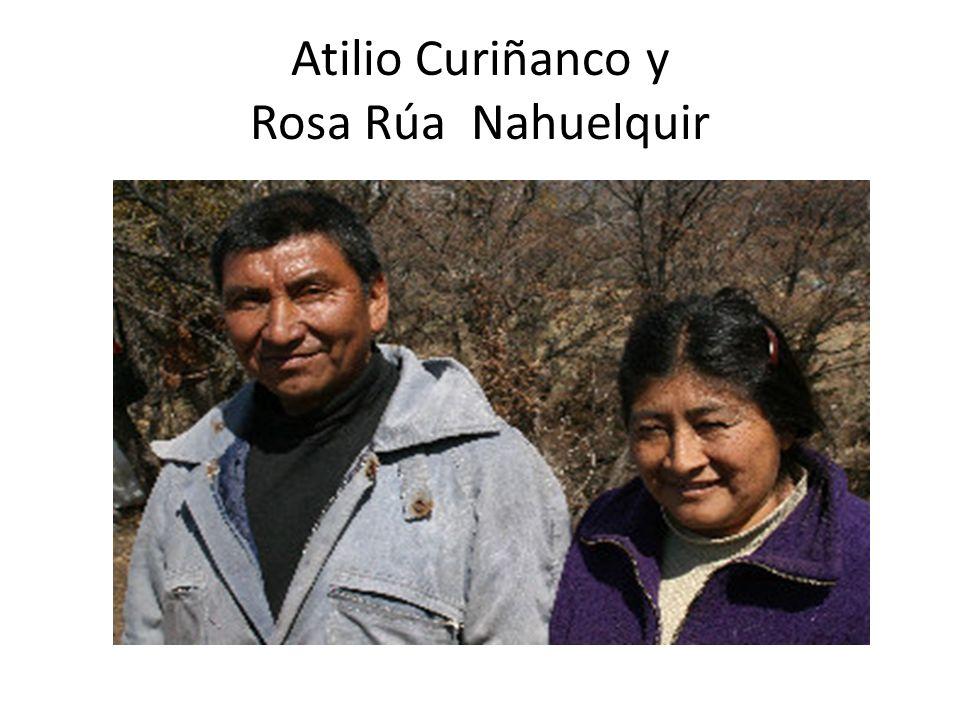 I/ El Pueblo Mapuche ¿Donde están.