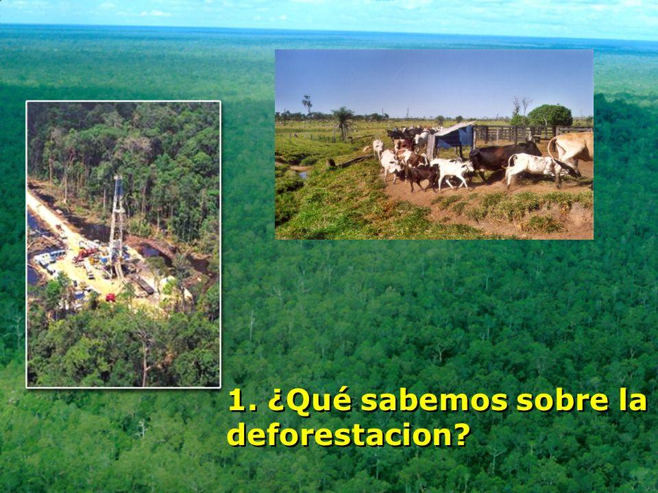 1. ¿Qué sabemos sobre la deforestacion