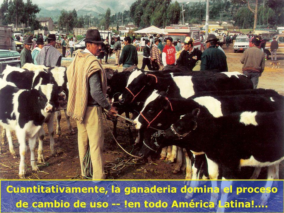 Cuantitativamente, la ganaderia domina el proceso de cambio de uso -- !en todo América Latina!….