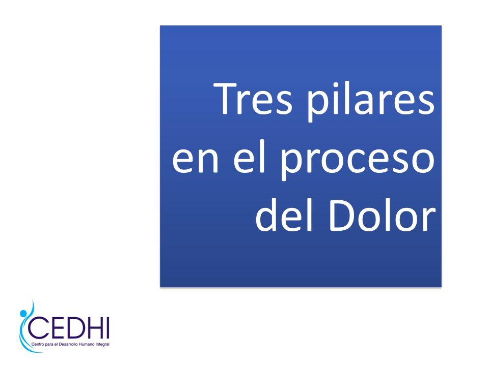 Tres pilares en el proceso del Dolor