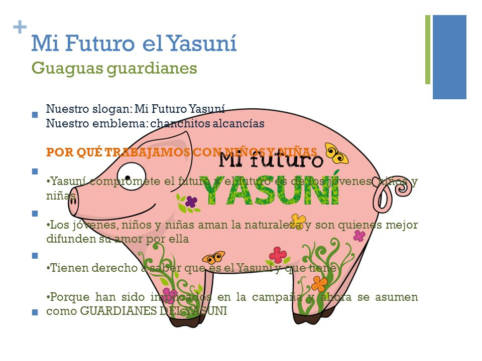 + Mi Futuro el Yasuní Guaguas guardianes Actividades de difusión del Yasuní en escuelas y colegios de Quito, con el fin de evitar la explotación petrolera u otras actividades extractivas.