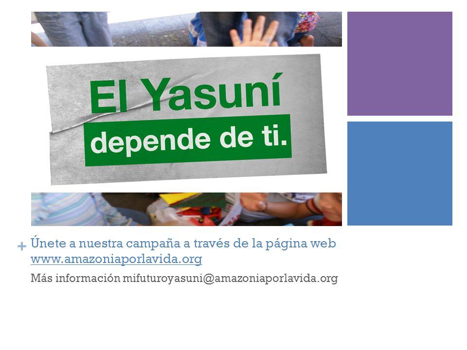 + Únete a nuestra campaña a través de la página web www.amazoniaporlavida.org Más información mifuturoyasuni@amazoniaporlavida.org