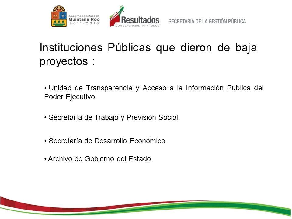 Unidad de Transparencia y Acceso a la Información Pública del Poder Ejecutivo.