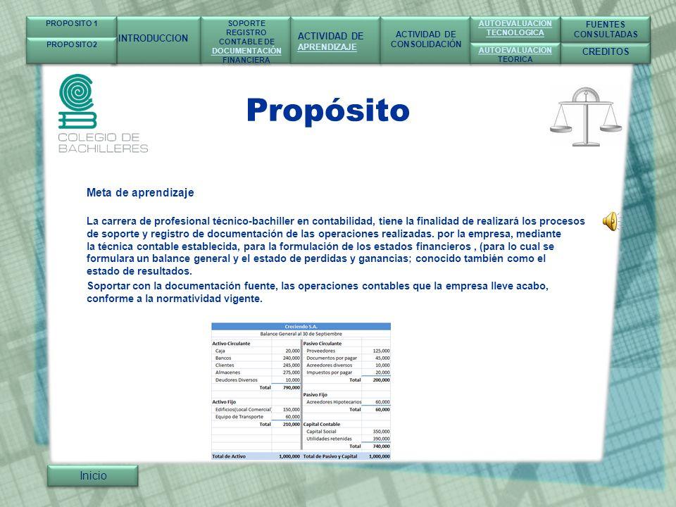 Propósito Que: Realizará el proceso del soporte y registro de documentos de las operaciones realizadas por la empresa.