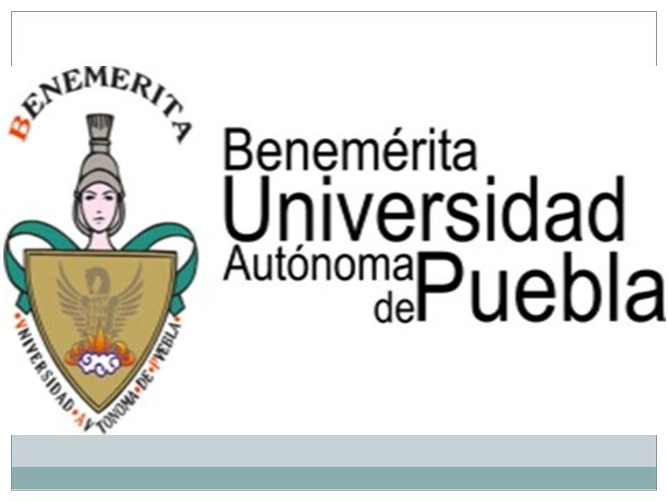 El cumplimiento de la obligación de la promoción, divulgación, difusión, respeto y protección de los Derechos Humanos por las Universidades Públicas en sus Planes y Programas de Estudios.